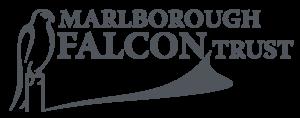 Falcontrust Gray (1)